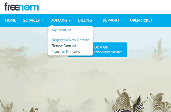Freenom Domain setup on Blogger